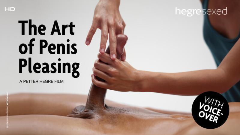 The Art of Penis Pleasing